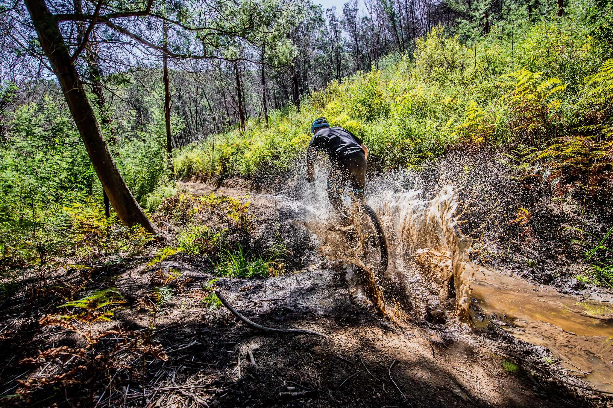 Mountain Biking Image Portfolio