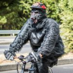 Cape Town Cycle Tour 2015
